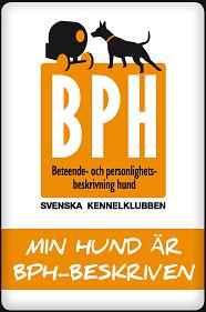 bph-minhund-186px